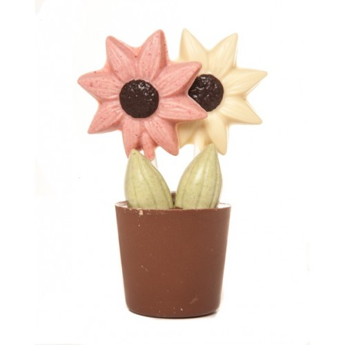 Flower_Pot_Unpacked-500x500